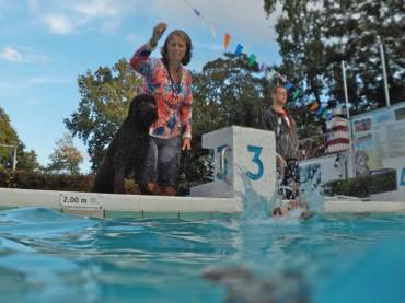 Zwembad de Bever